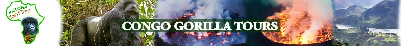Tour Congo Gorilla Safaris